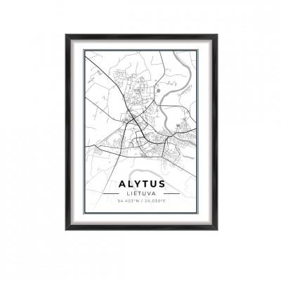 Miesto žemėlapis Alytus